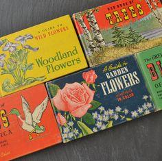 Vintage Field Guide Books  Bird Guide  Flower Guide  by KOLORIZE, $50.00