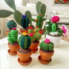 My little cactus (English) Crochet Home, Crochet Gifts, Cute Crochet, Cactus En Crochet, Crochet Flowers, Tshirt Garn, Cactus Craft, Crochet Mignon, Crochet Hook Sizes