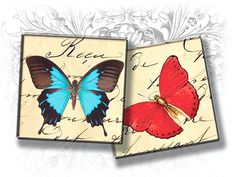 INSTANT DOWNLOAD Butterflies on French Letters 1 x 1 by Eolene