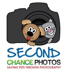 Second Chance Photos professionally portraits shelter animals available for adoptions... some of these animals are stinkin' adorable!  This organization also offers workshops to help successfully photograph homeless pets and also offers a PDF with tips:  http://www.secondchancephotos.org/ShelterPhotoTips.pdf