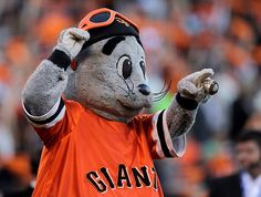 San Francisco Giants mascot Lou Seal before their game against the St. Louis Cardinals in Game 2 of the National League Championship Series at AT Park in San Francisco, Calif. on Monday, Oct. 15, 2012.  (Nhat V. Meyer/Staff)