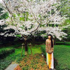 今年もお花見まともに出来なかったと 写真を見て少しがっかり ELLE On Lineの撮影現場での枚 衣装は #Chloe  可愛かったなー by shishido_kavka via Instagram w/ifttt