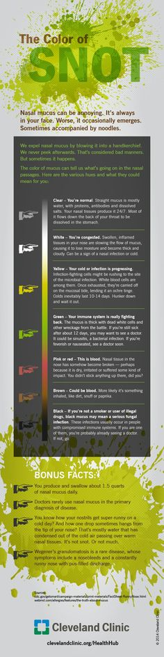 Color of snot infographic by the Cleveland Clinic. Color of snot infographic by the Cleveland Clinic. Health Facts, Health Tips, Health And Wellness, Nursing Tips, Nursing Notes, School Nursing, Independent Day, Respiratory Therapy, Cleveland Clinic