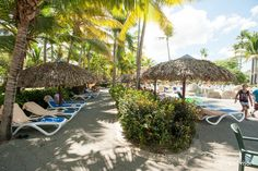 ClubHotel Riu Bachata (Puerto Plata, Dominican Republic) - UPDATED 2016 All-inclusive Resort Reviews - TripAdvisor All Inclusive Resorts, Dominican Republic, Resort Spa, Trip Advisor, Travel Destinations, Around The Worlds, Patio, Spaces, Outdoor Decor
