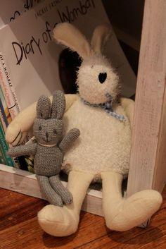 A Whimsical Trip Down Under – Glam-o-Mamas Rabbit Run, Amanda, Whimsical, Bunny, Teddy Bear, Cute Bunny, Teddy Bears, Rabbit, Rabbits