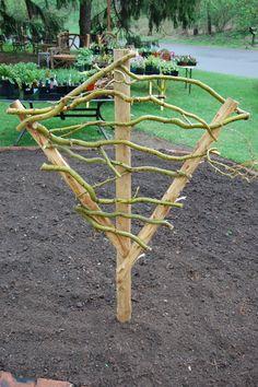 curly willow trellis