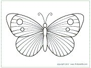 Download Butterfly Template 9