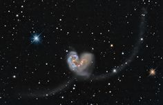 The Antennae Galaxies NGC 4038 and 4039    were discovered by the great William Herschel in 1785 in the constellation Corvus.  The system's name derives from the antennae-like wisps of gasses ejected from the heart shaped core, when two galaxies became one in a cosmic collision