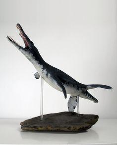 Pliosaurus macromerus by Thomasotom