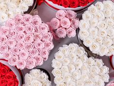 Our endless arrangement options offer a million ways to show your loved one how much you care this Valentine's Day. Select your perfect arrangement today! Million Roses, Preserved Roses, Classic Collection, Most Beautiful, Valentines Day, Gifts, Valentine's Day Diy, Presents, Favors
