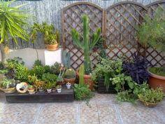 jardines terrazas y balcones