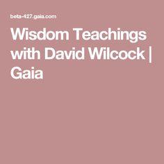 Wisdom Teachings with David Wilcock   Gaia