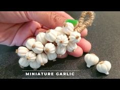 (452) Miniature Garlic using homemade clay/Miniature food /art and craft/Kitchen decor/CreativeCat - YouTube Clay Projects, Clay Crafts, Arts And Crafts, Beautiful Flower Drawings, Beautiful Flowers, Cold Porcelain, Porcelain Clay, Garlic Uses, Homemade Clay
