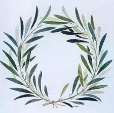 48 Ideas For Olive Tree Tattoo Branches Leaves Olive Tree Tattoos, Willow Tree Tattoos, Project Life Karten, Botanical Illustration, Illustration Art, Olive Wreath, Inspiration Art, Tattoo Inspiration, Wreath Drawing