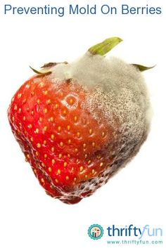 This is a guide about preventing mold on fresh berries. will have to remember this