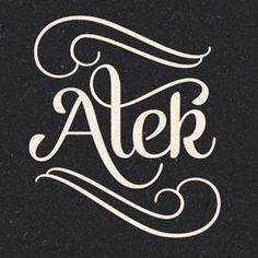 Alek Decorative Script Font Family by Fenotype