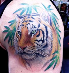 An amazingly gorgeous tiger by Chris Garver.