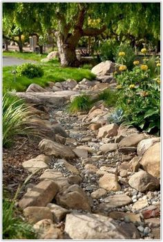 Creative Lawn and Garden Edging Ideas with Images. 37 Creative Lawn and Garden Edging Ideas with picture, inpiration for your garden Small Front Yard Landscaping, Large Backyard, Landscaping With Rocks, Backyard Landscaping, Backyard Ideas, Dry Riverbed Landscaping, Wisconsin Landscaping Ideas, Terraced Landscaping, Desert Backyard