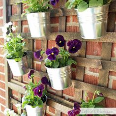 a tutorial for stained lattice with galvanized planters