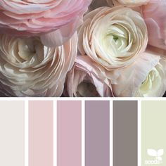 """""""today's inspiration image for { flora dream } is by @fairynuffflower ... thank you, Steph, for another breathtaking #SeedsColor image share!"""""""