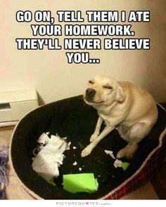 #Humor #Funny