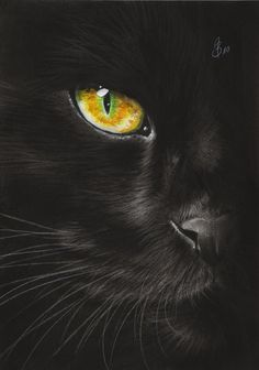 black cat paintings | black cat eye by Drehli