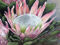 Watercolor Flowers, Watercolor Art, Painting Flowers, Protea Art, Blue Flower Wallpaper, Australian Native Flowers, Watercolor Painting Techniques, Rare Flowers, Ceramic Flowers