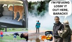 """""""Again, sounds like a whole lot of the same crap dog breeders, handlers, trainers have to put up with from all the ar groups and just general population that really know only pet dogs and only one or two dogs at a time."""" Yellowstone Rangers Walk Off Job In Protest of 'Tourist Stupidity'"""