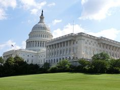 You're Not Like The Rest: On Congress and Re-election | John Chwat | Working In Washington