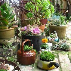 Image result for teapot garden