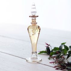 Oh the lovely things: Homemade Jasmine Perfume (Guest Post by Cybele)
