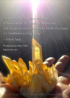 """""""In a crystal we have clear evidence of the existence of a formative life principle, and although we cannot understand the life of a crystal, it is nonetheless a living being."""" — Nikola Tesla"""