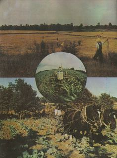 image from This Is The Farm Book by Stephen Gaskin (and The Farm)