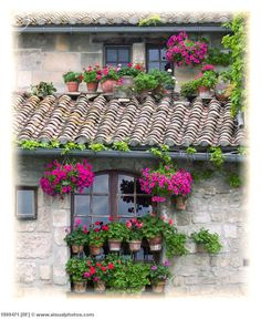 Window in Arles, France. | I've seen this exact window, and even taken my own pictures of it! (I should pin those instead!) SPECIAL!