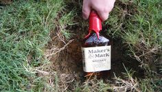 Burying the bourbon is a Southern wedding tradition to prevent rain on your wedding day! You bury the bottle the week of your wedding at the ceremony location. Some people dig it back up on the wedding day and have a swig Outside Wedding, On Your Wedding Day, Wedding Tips, Perfect Wedding, Wedding Planning, Dream Wedding, Wedding Fun, Rustic Wedding, Wedding Bells