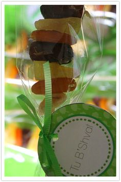 Dried Fruit Kabobs for Tu B'Shvat with Free Printables