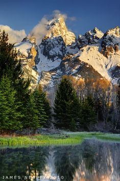 Grand View by James Needly ~ Schwabacher& Landing, Grand Teton National Park, Wyoming