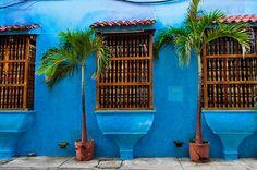 colombia---los colores brillantes de esta pared me hacen pensar en la vida tropical de colombia. quiero ir ahorita!
