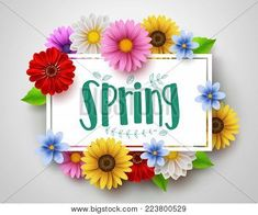 Spring vector template design with spring text in white empty frame and colorful various flowers like daisy and sunflower elements in white background for spring season. - Buy this stock vector and explore similar vectors at Adobe Sto Empty Frames, Adobe, Royalty Free Images, Spring, Illustration, Daisy, Clip Art, Seasons, Templates