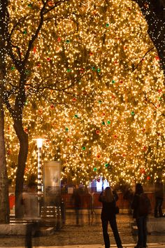 Holidays in Faneuil Hall, Boston-  I would love to go back to Faneuil Hall during Christmas to see the lights!