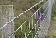 6 Options for Farm Fences - Photo courtesy iStockphoto/Thinkstock (HobbyFarms.com)