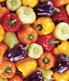 For the container garden - Pepper, Sweet Carnival Mix Five different, colorful bell peppers for the price of one.