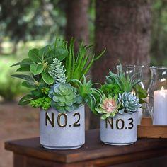 Plants, Hydrangeas, Floral Arrangements, Lavender, Nice Asses, Planters, Plant, Planting