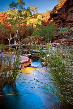 W - Weano Gorge - Karijini National Park - Western Australia. Western Australia, Australia Travel, Australia Beach, Queensland Australia, Places To Travel, Places To See, Terre Nature, Places Around The World, Around The Worlds