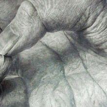 手の細密描写