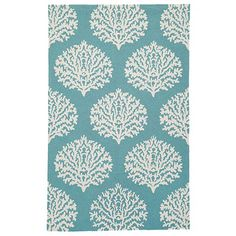 Sicilian Coral Indoor/Outdoor Rug - another in front of the couch possibility