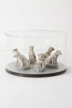 Chien Coffee Table from anthropologie