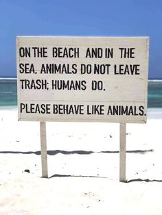 We would be much better off if humans behaved like animals...., no greed, no exploitation, no distruction..... Great sign, seen on Facebook. Original source unknown. Quote Backgrounds, Wallpaper Backgrounds, Background Quotes, Phone Wallpapers, Dude Where's My Car, Pretty Phone Wallpaper, Like Animals, Free Iphone, Beach Themes