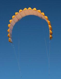 Peter Lynn kite