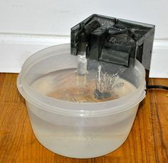 Diy pet water fountain| bet i can make it look a little nicer than this! But awesome concept!